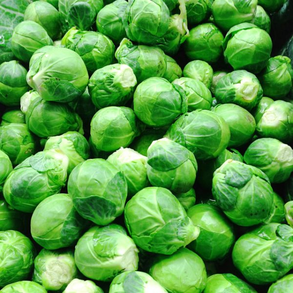 BrusselSprout